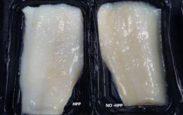 Figure 2. Effect of HPP cod fish samples. Source: Hiperbaric Applications and Food Processing.