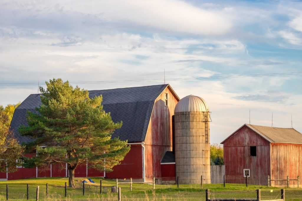 US Farm with Silo by Renee Gaudet