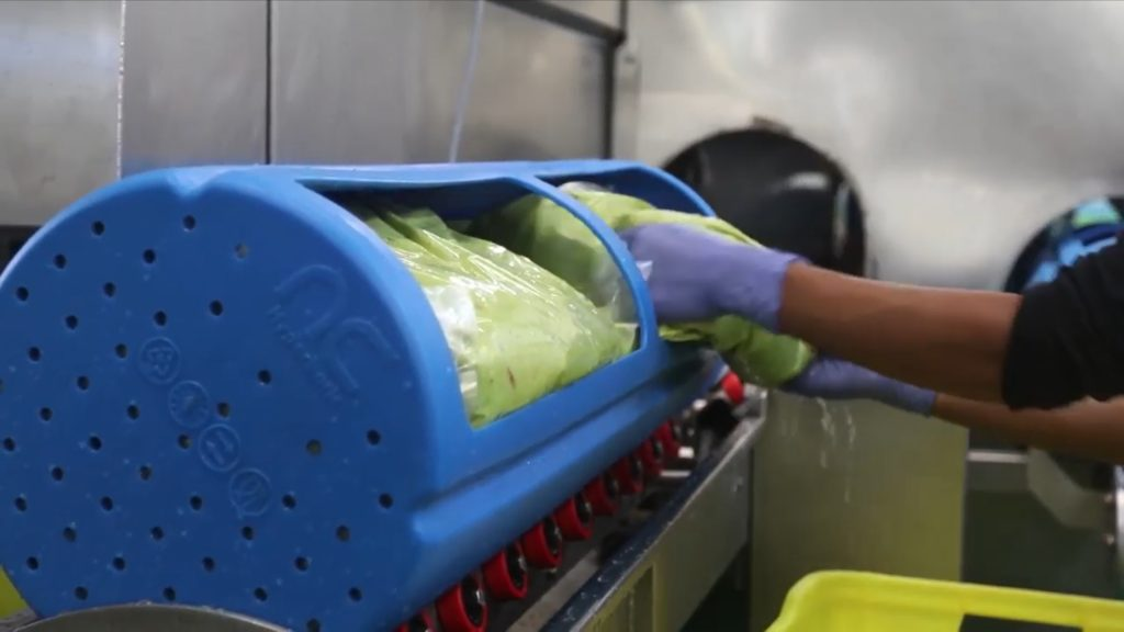 Avocado products after the high pressure processing in Hiperbaric equipment.